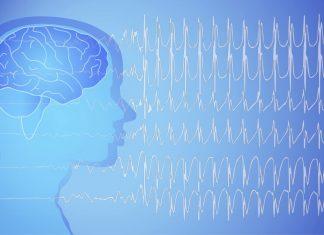 Havale - Epilepsi Nöbeti
