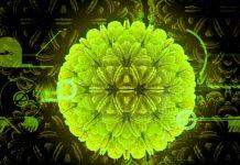 Corona (Korona) Virüs Hakkında Merak Edilenler