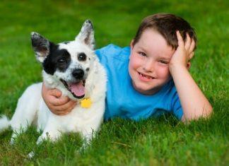 Evcil Hayvanlar ve Çocuk