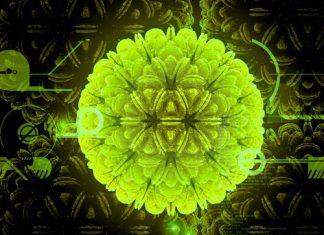 Rahim Ağzı Kanseri Aşısı (HPV)