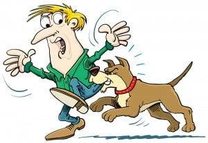 Köpek Isırması